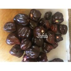 JAFSH Black