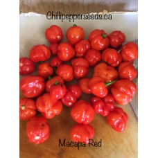 Macapa Red