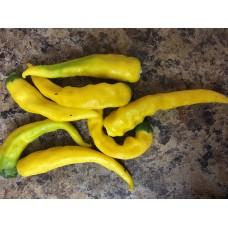 Macka Sarga Pepper Seeds