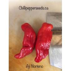 Aji Norteno Pepper