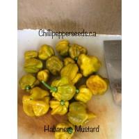 Habanero mustard
