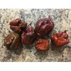 Carolina Reaper Chocolate Pepper Seeds