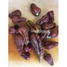 7-Pot Gravedigger Pepper Seeds