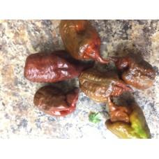 Defko Pepper Seeds