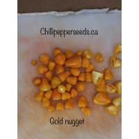 Golden Nugget Chilli Pepper Seeds
