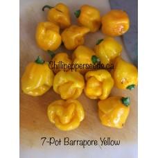 7-Pot Barrackpore Yellow Chilli Pepper Seeds