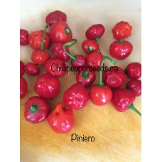Pinheiro Chilli Pepper Seeds