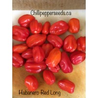 Habanero Long Red Chilli Pepper Seeds
