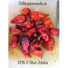 PDN X Bhut Jolokia Pepper Seeds