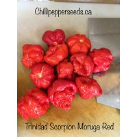 Trinidad Scorpion Moruga Red Chilli Pepper Seeds