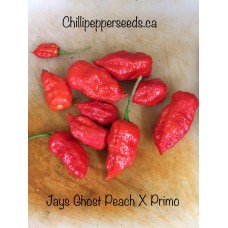 Jays Ghost Peach x Primo