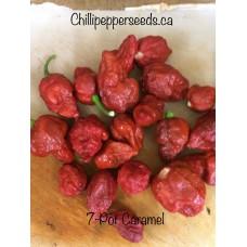 7-Pot Brain Strain Caramel Chilli Pepper Seeds
