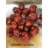 Habanero Capuchino Pepper Seeds