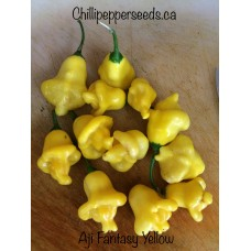 Aji Fantasy Pepper Yellow
